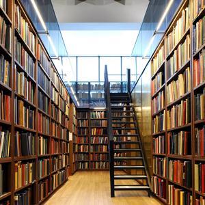 Библиотеки Рузаевки